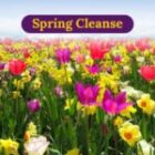 Shake Off The Winter Blues with a Full Spring Cleanse